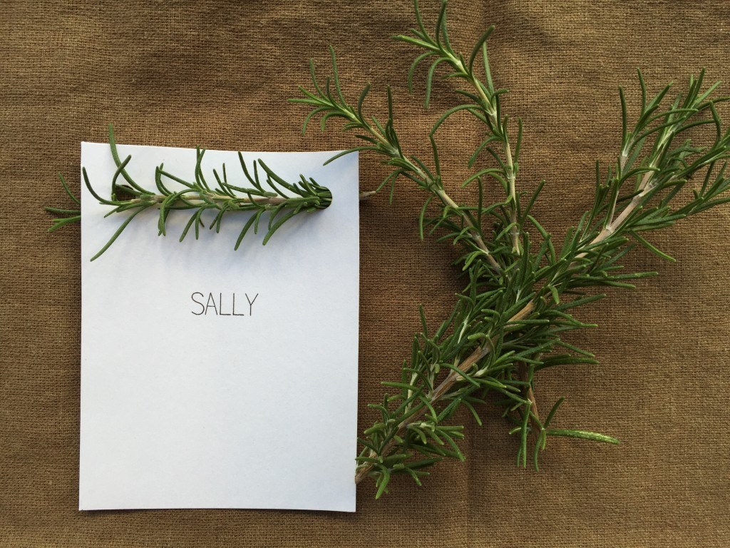 Sally placecard
